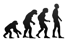 Evolution (source: Wikimedia)